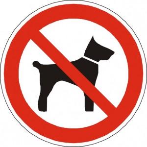 No se admiten animales en el restaurante